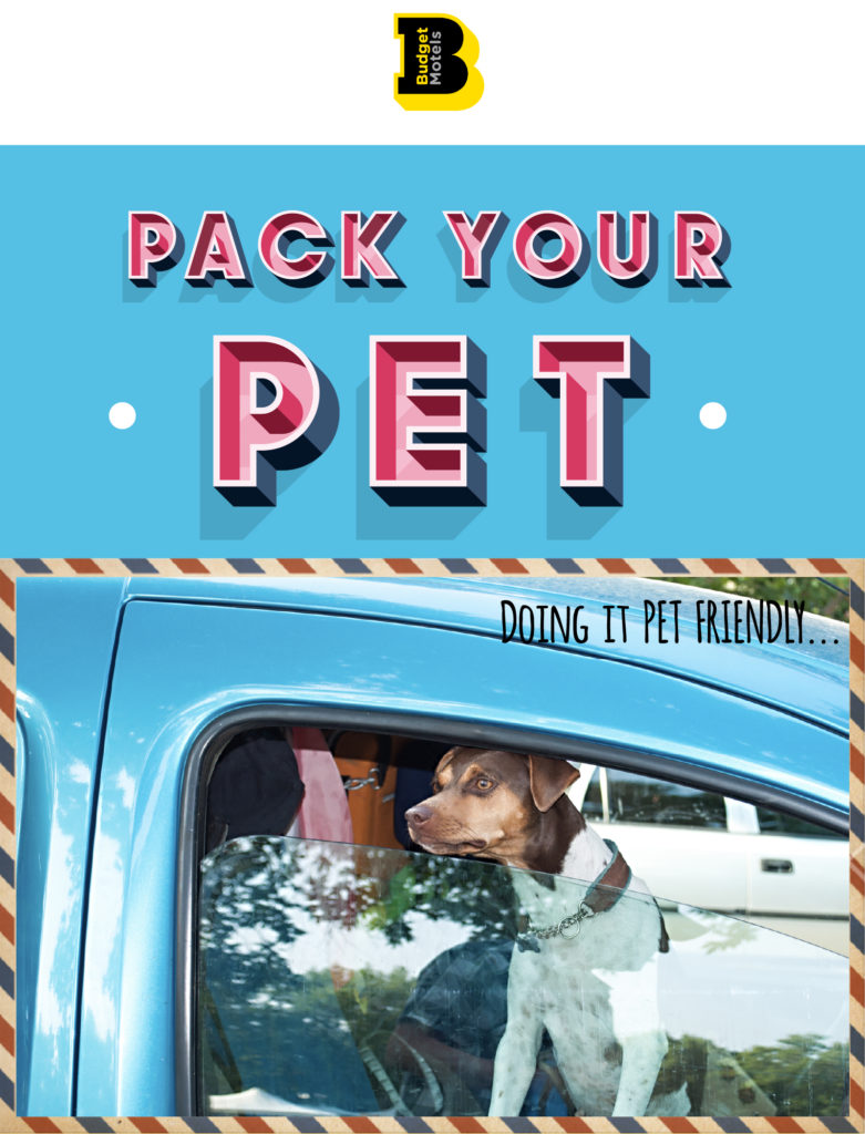 Budget Motel Chain Greetings from Postcard Pack Your Pet